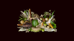"Food Matters March: ""Gentle Harvest"" Photo, Copyright- Ellen Hoverkamp"